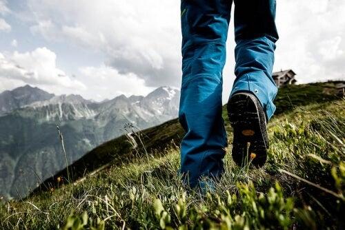 sport-wandern-natur