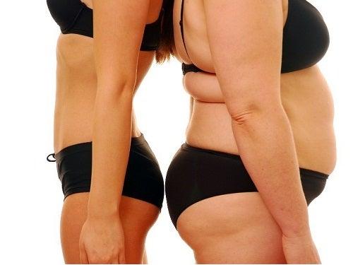 Fettleibigkeit beeinflusst die Gesundheit der Eierstöcke