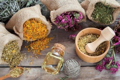 Duftspender-mit-aromatischen-Kräutern-und-Trockenblumen