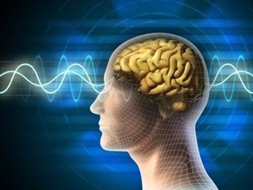 10 Tipps für ein junges, aktives Gehirn bis ins Alter