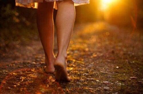 Ein Spaziergang im Wald ist gesund und entspannt