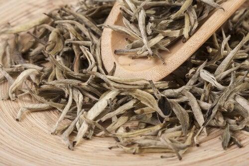 Köstliche Tees mit viel Magnesium