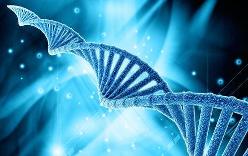 DNA Strang