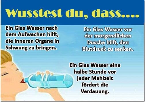 10 Vorteile, Wasser auf nüchternen Magen zu trinken