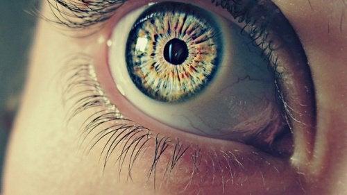 7 erstaunliche Aspekte über unsere Pupillen
