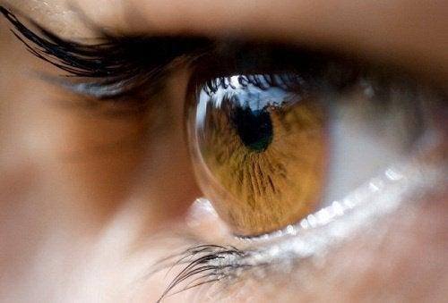Auge in Großaufnahme