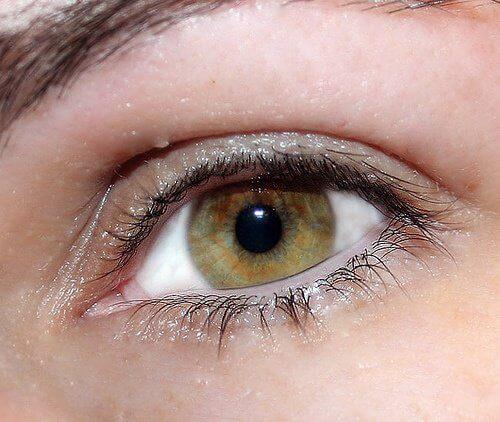 Auge-geschminkt