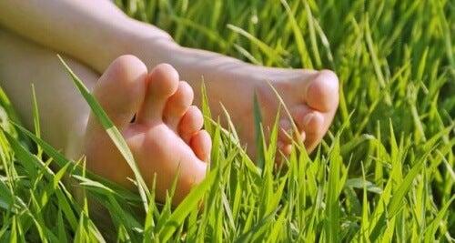 Füße auf einer Wiese warten auf eine Fußmassage