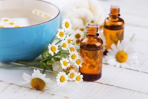 Rezepte für Gesichtswasser mit Kamille