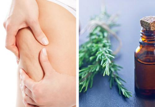 Wie Rosmarintinktur gegen Cellulite helfen könnte