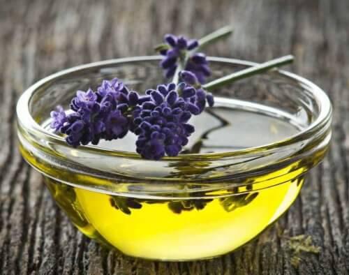 Lavendeloel