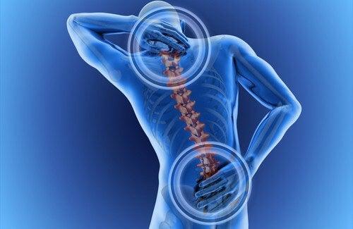 Rückenschmerzen: woher sie kommen und was dagegen hilft