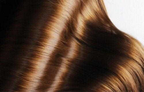 Pflanzenöle für schönes Haar