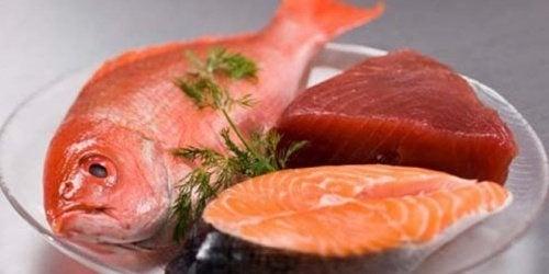 Fische und Meerestiere sind besonders hoch mit giftigen Schadstoffen belastet