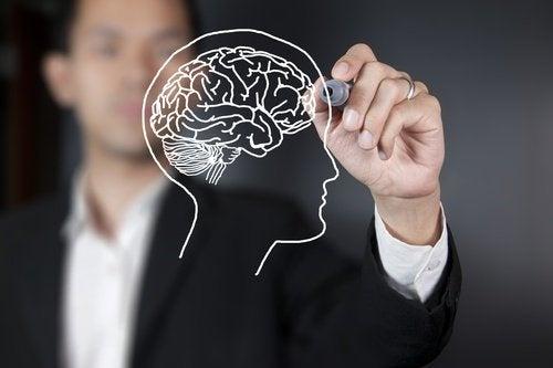 Äpfel und Gehirngesundheit
