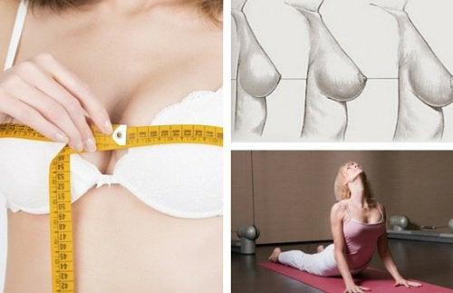 Tipps und Empfehlungen für straffe Brüste