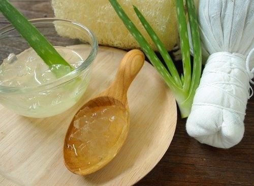 Aloe Vera gegen Hautflecken