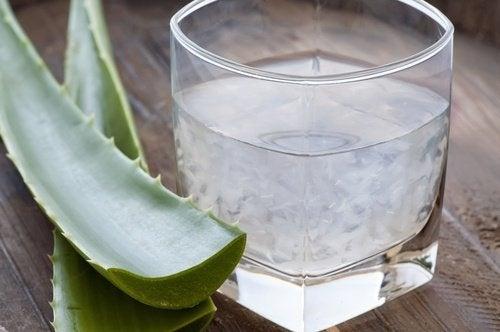 Aloesaft gegen Sodbrennen