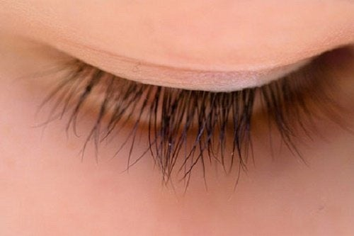 Über Wimpern und das Wimpernwachstum