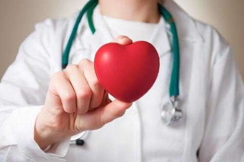 Bauchfett und Herzgesundheit