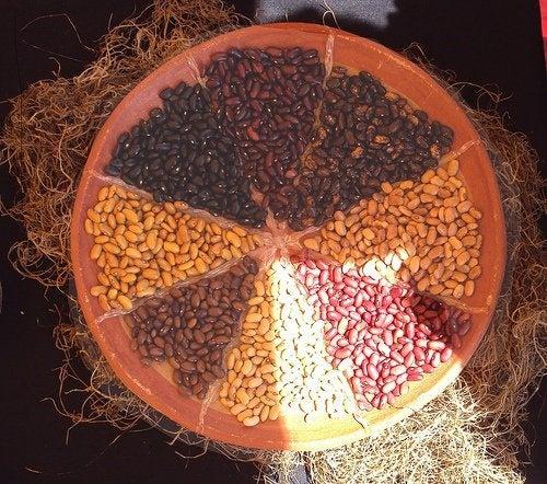 Blähungen durch Lebensmittel: Bohnen