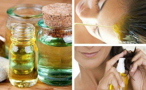 7 Pflanzenöle und was sie deinen Haaren Gutes tun