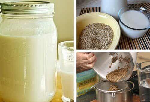 Kanariensaat-Milch hat vorzügliche Eigenschaften!