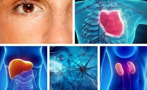 10 Bereiche deines Körpers, die durch Stress beeinflusst werden