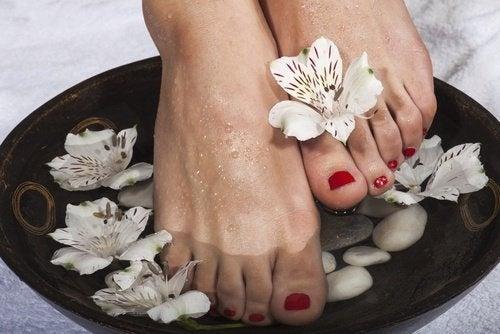 Fußbad gegen trockene Füße