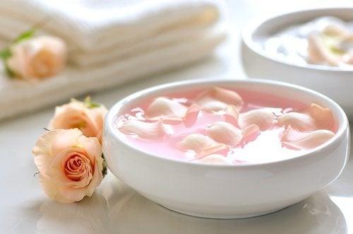 Joghurt-Rosenwasser