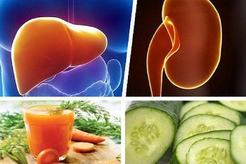 Leber und Nieren stärken mit Karotten-Gurken-Saft