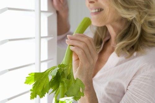 Wie Chlorophyll zur Gewichtsreduktion wirkt