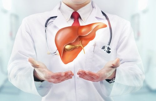 Symptome von Leberkrebs erkennen und Leberkrebs vorbeugen