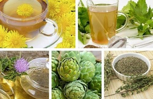 8 reinigende Tees aus Heilpflanzen