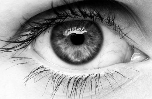 Bemerkenswerte Dinge über unsere Augen, die du bestimmt noch nicht kennst