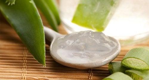 4 hausgemachte Cremes für seidige Haut mit Aloe Vera