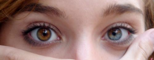 Kurioses über unsere Augen