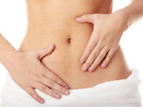 Verdauung und Präbiotika und Probiotika