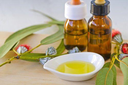 ätherische Öle gegen Insekten