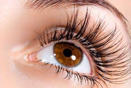 Die besten Hausmittel gegen Wimpernausfall