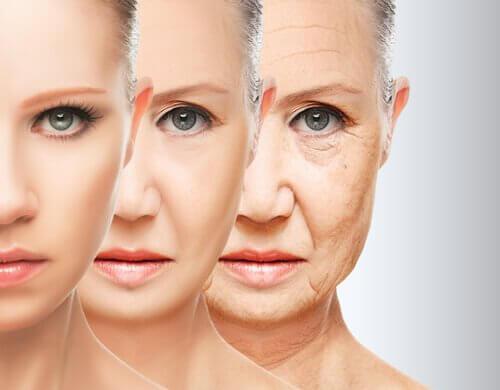 Apfelschale gegen Hautalterung