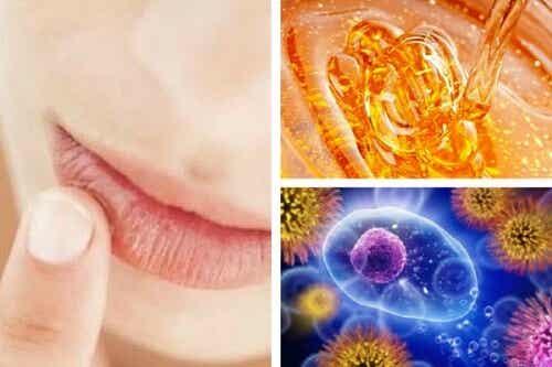 10 positive Eigenschaften von Honig