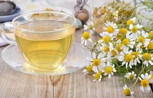 Tè alla camomilla per il fegato