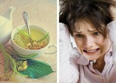 Kräutertees-gegen-Nervosität-undAngst