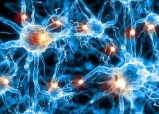 Neuronen-sind-im-Schlaf-aktiv