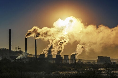 Umweltgift schadet der Leber