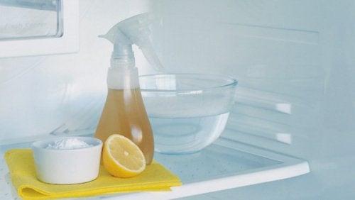 Verbanne schlechte Gerüche aus deinem Kühlschrank - Besser Gesund ...
