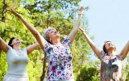 Frauen machen Übungen im Park für einen gesunden Körper
