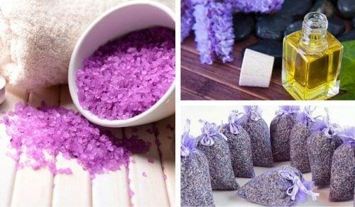 Lavendel für Haushalt, Kosmetik und Gesundheit