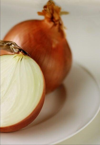 Zwiebel als Heilmittel zur Wundheilung